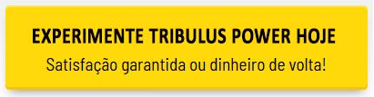tribulus power experimente